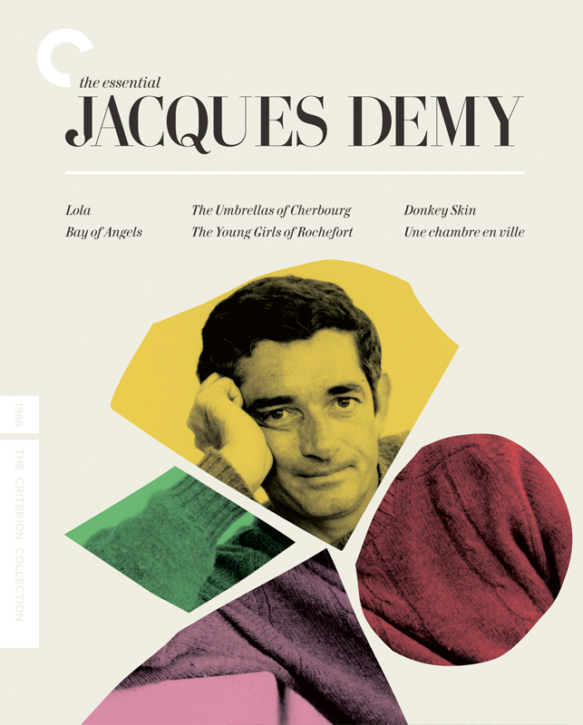 demy_cover_slipcover